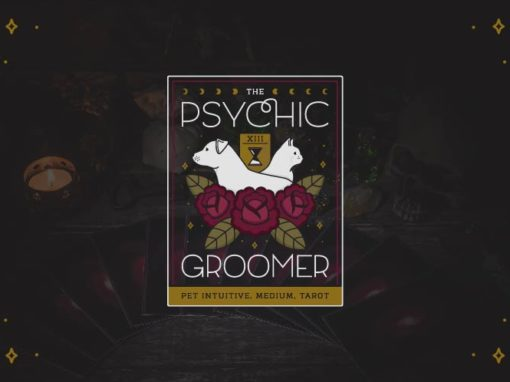 The Psychic Groomer